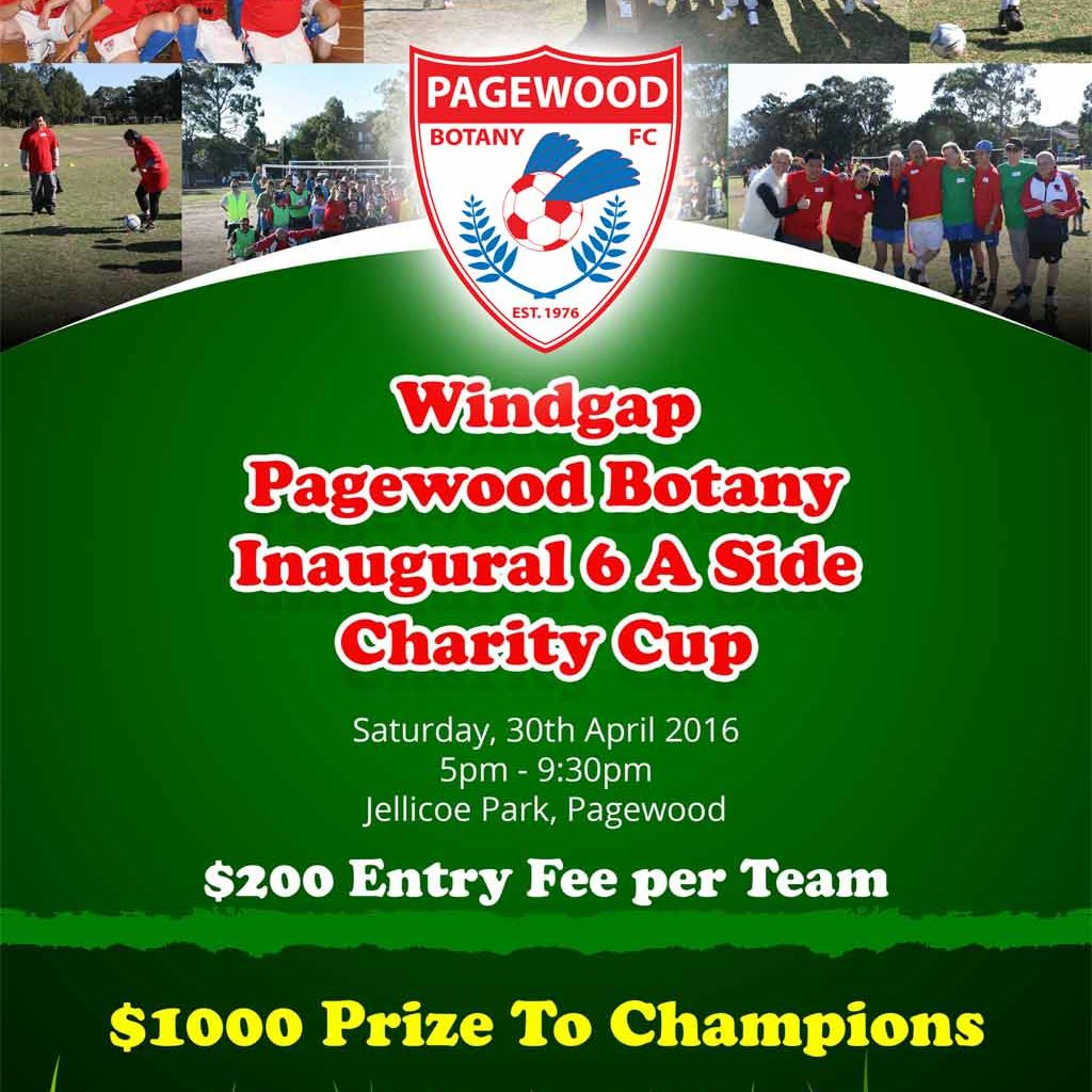 PagewoodBotanyWindgap 6 A Side Charity Cup